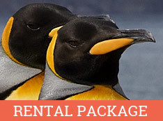Antarctica: Complete Rental Package